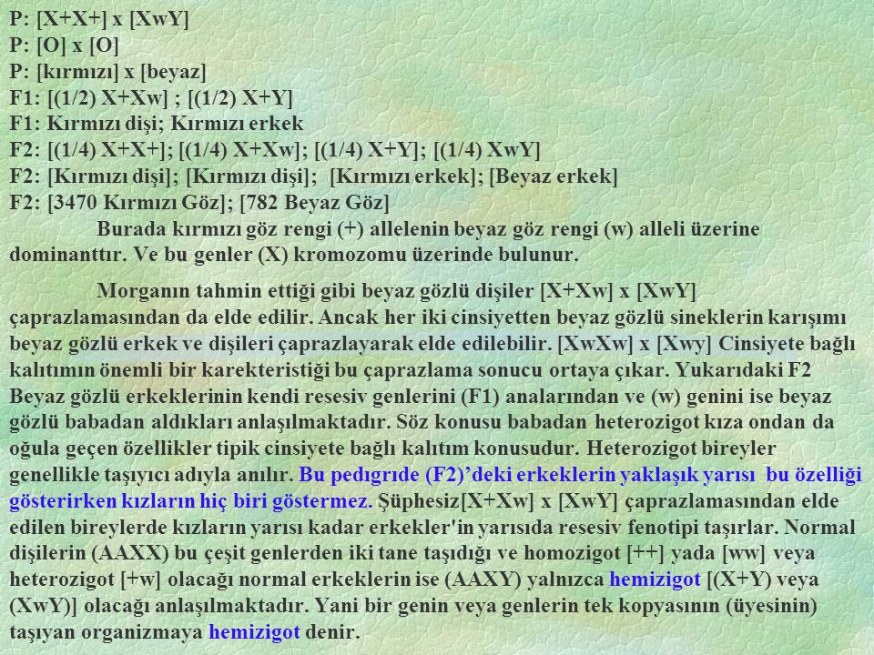 P: [X+X+] x [XwY] P: [O] x [O] P: [kırmızı] x [beyaz] F1: [(1/2) X+Xw] ; [(1/2) X+Y] F1: Kırmızı dişi; Kırmızı erkek F2: [(1/4) X+X+]; [(1/4) X+Xw]; [(1/4) X+Y]; [(1/4) XwY] F2: [Kırmızı dişi]; [Kırmızı dişi]; [Kırmızı erkek]; [Beyaz erkek] F2: [3470 Kırmızı Göz]; [782 Beyaz Göz] Burada kırmızı göz rengi (+) allelenin beyaz göz rengi (w) alleli üzerine dominanttır. Ve bu genler (X) kromozomu üzerinde bulunur.